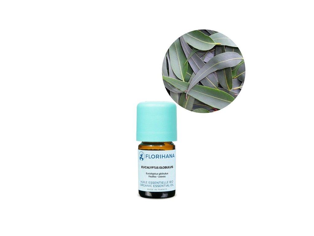 451 etericky olej eukalyptus globulus bio florihana