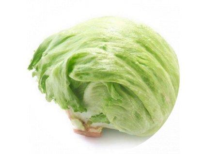 salat ladovy copy