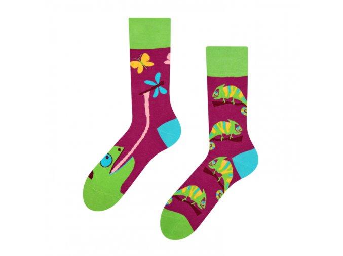 Veselé ponožky Chameleon   Zelenáčky