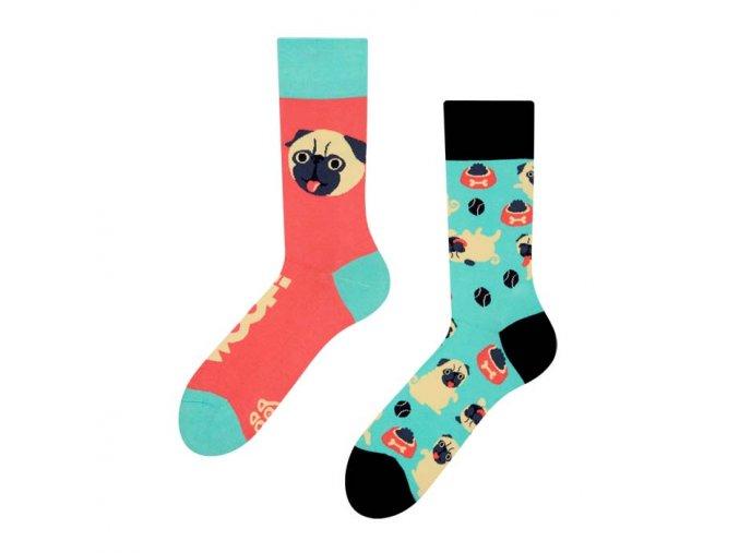 Veselé ponožky Mops | Zelenáčky
