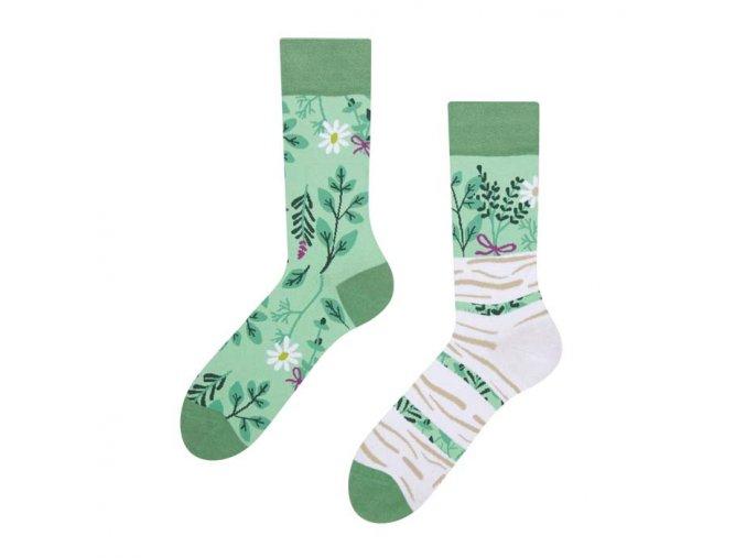 Veselé ponožky Bylinky   Zelenáčky