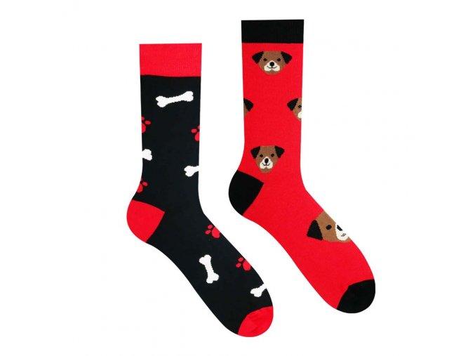 Veselé ponožky Pejsek   Zelenáčky