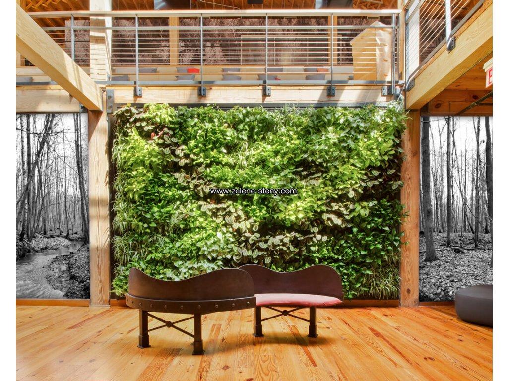 Zelená stěna LivePanel PACK 6x4