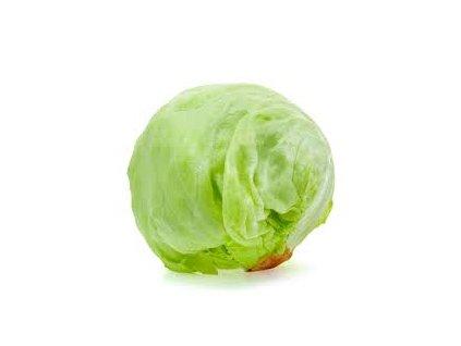 salát ledový