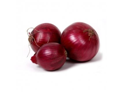 cibule cervena