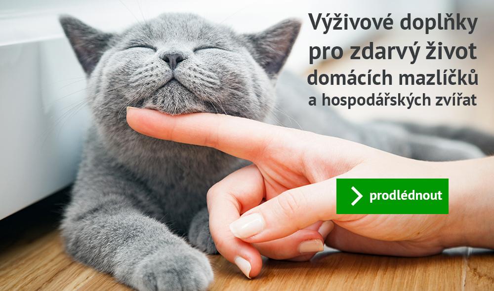 BioAktiv pro Zvířata