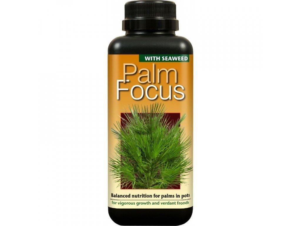 62885 palm focus 300ml