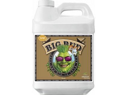 AN - BIG BUD COCO (Objem 500 ml)