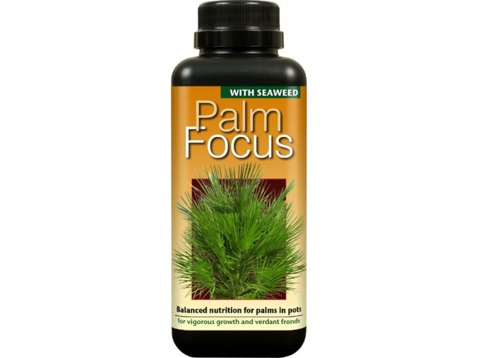 62882 palm focus 100ml