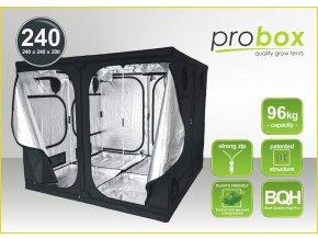 PROB240