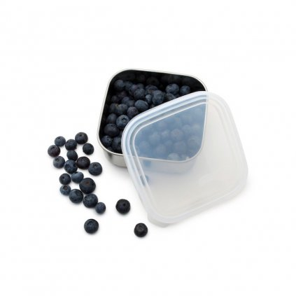 to go container small clear