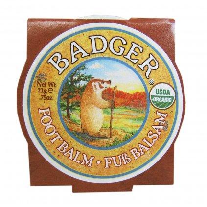 7203 07 Badger Foot Balm small 0634084025125