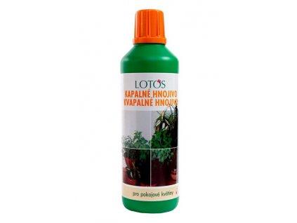 Lotos pokojové rostliny 500 g