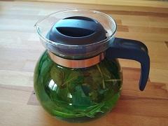 Bylinné čaje při nachlazení