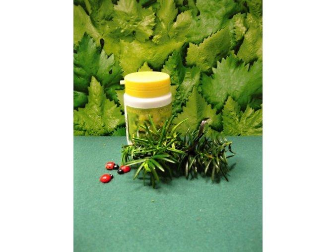 Na játra a žlučník- Tobolky EPAM