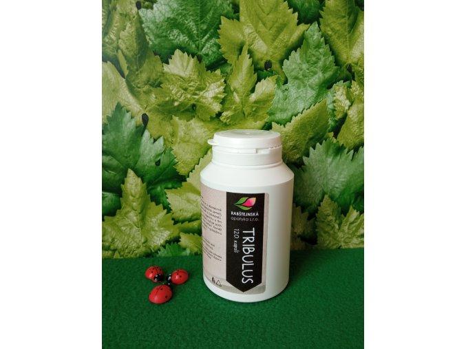 Tribulus terrestris (kotvičník)  kapsle 40% 200 mg 120 tob.