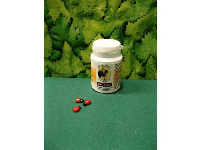 Glukomannan udržení normální hladiny cholesterolu a snížení hmotnosti Dr.Slim