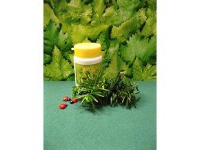 Echinacea tobolky EPAM