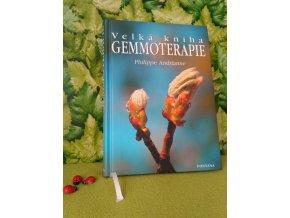 Kniha Velká gemmoterapie v
