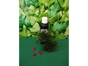 Jilm tinktura z pupenů. Antioxidant, drenáž při kožních nemocech