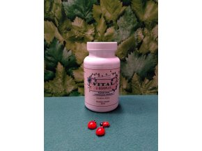 Vitamin C na energetický metabolismus, imunitní systém, snížení únavy a vyčerpání, vstřebávání železa