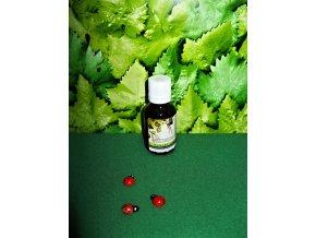 Bříza Tinktura z pupenů Normální trávení a detoxikace, normální stav kloubů, močových cest a ledvin