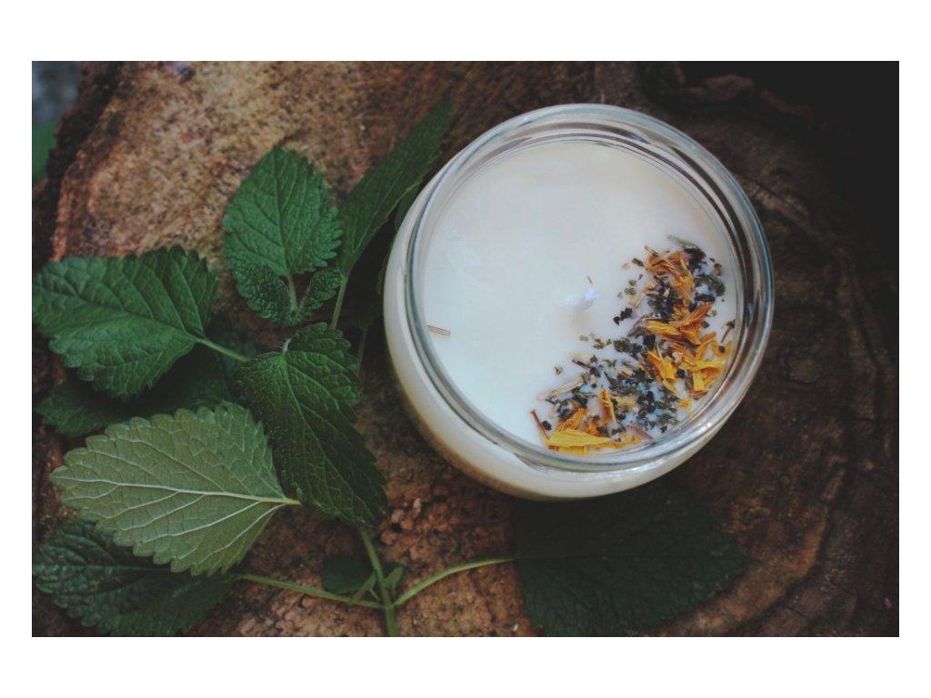 Sojová svíčka ve skle 50 ml | Meduňka s citronelou