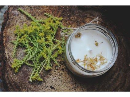 Svíčka ze sojového vosku 50 ml | Vanilka