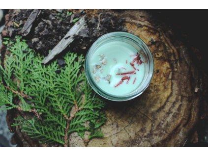Sojová svíčka ve skle 150 ml | Vůně lesa