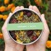 Breathe&Immune bylinný čaj | 65 g