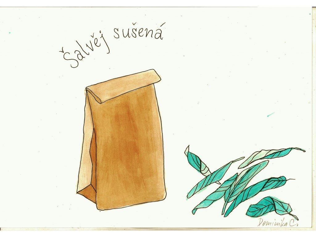 Šalvěj sušená
