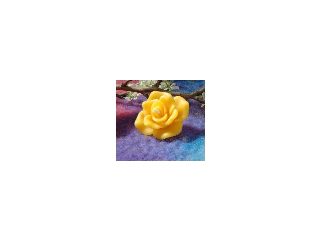 Plovoucí růžička