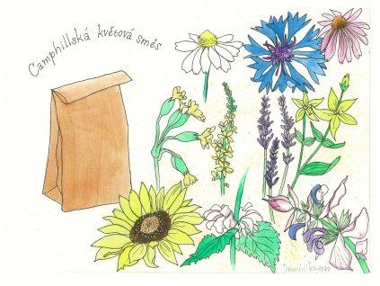 Směs camphillská květová