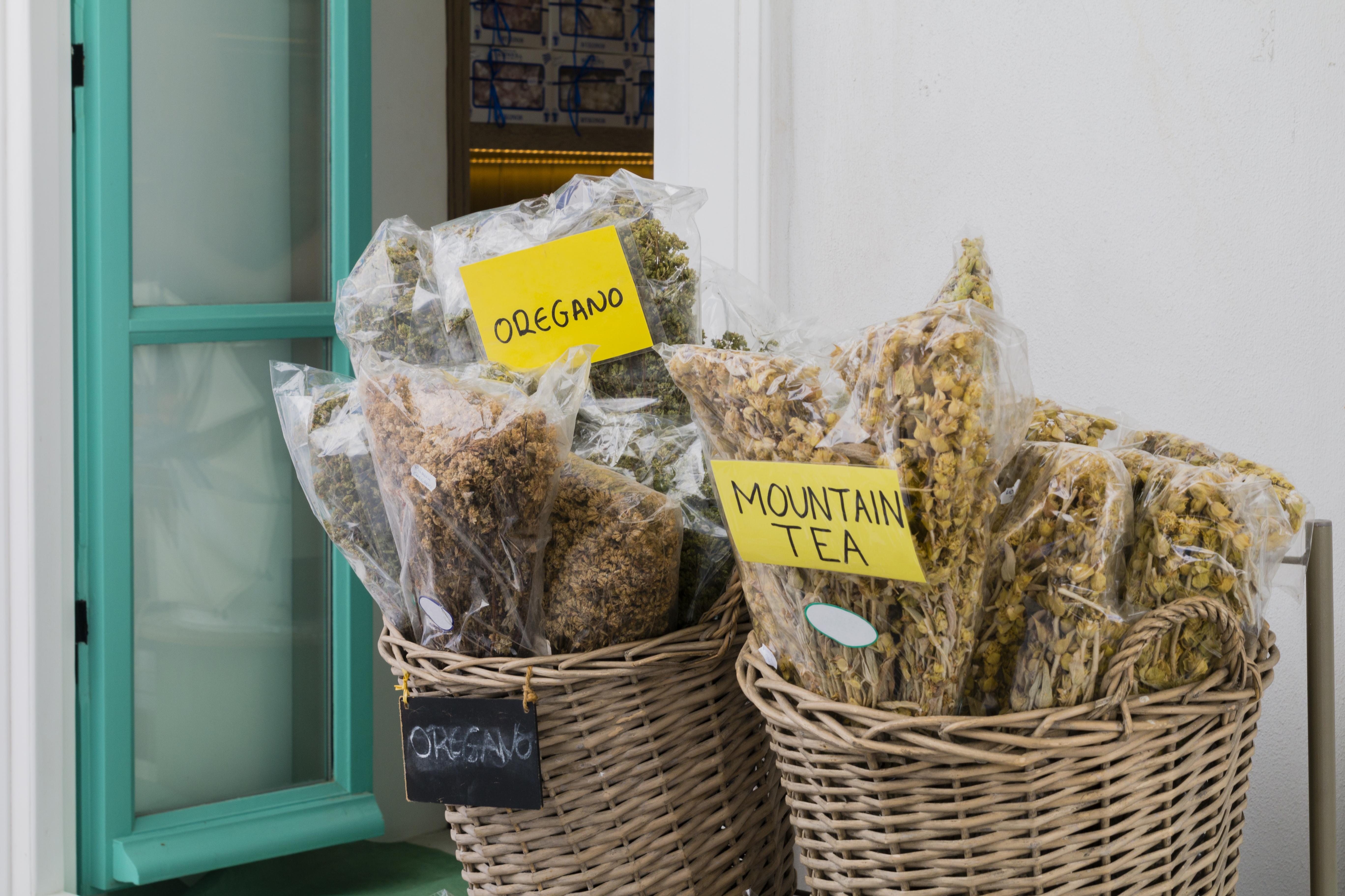 Hojník horský: jaká bylinka se skrývá pod označením řecký horský čaj?