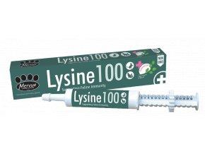 Lysine100