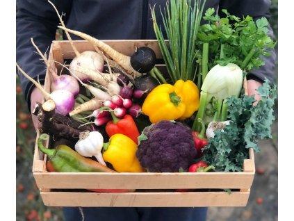 Zeleninová debničla poživen