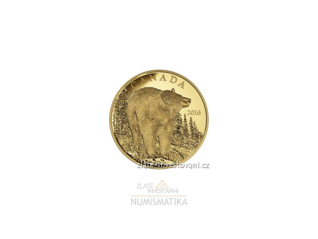 4670 zlata mince medved cerny kanada 2016 proof