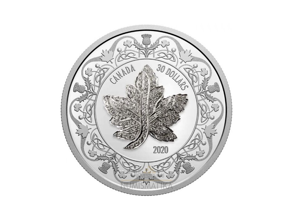 Stříbrná mince Maple Leaf Brooch Legacy 2020 2 Oz proof