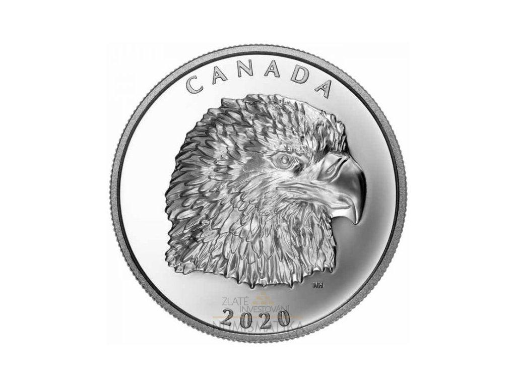 Stříbrná moderní Proud Bald Eagle 1 Oz 2020 proof