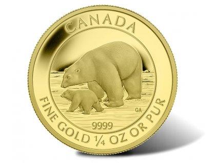 Zlatá mince Lední mědvěd 2015 1/4 Oz proof