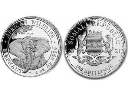 Somálský slon 1 Oz 2021