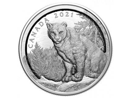 Stříbrná moderní mince Vícevrstevná Puma 2021 proof