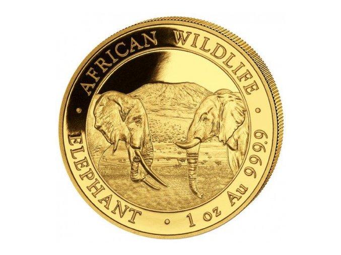 investiční zlatá mince somálský slon 2020-African Wildlife