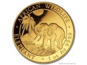 4910 investicni zlata mince somalsky slon 2017 african wildlife 1 oz