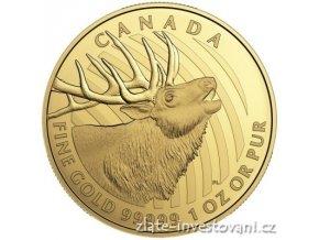 5201 investicni zlata mince jelen 2017 serie wild life kanada 1 oz