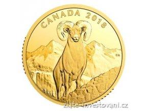 6347 zlata mince 200 cad bighorn 2018 kanada