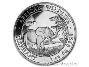 Investiční stříbrná mince somálský slon 2019 1 Oz