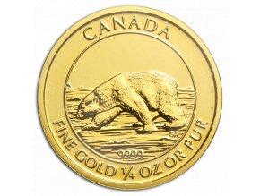 Zlatá mince 10 dollarů-Lední medvěd 2013