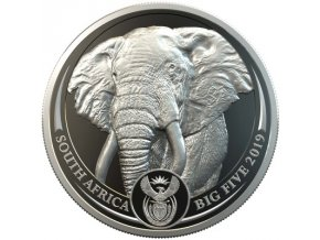 Platinová mince Slon 2019-1 Oz proof