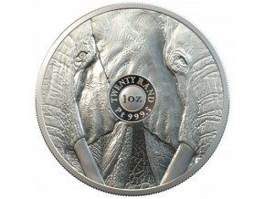 Platinová mince Slon 2020-1 Oz proof